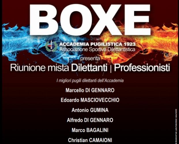 Boxe al palasport di San Benedetto   Piceno News 24
