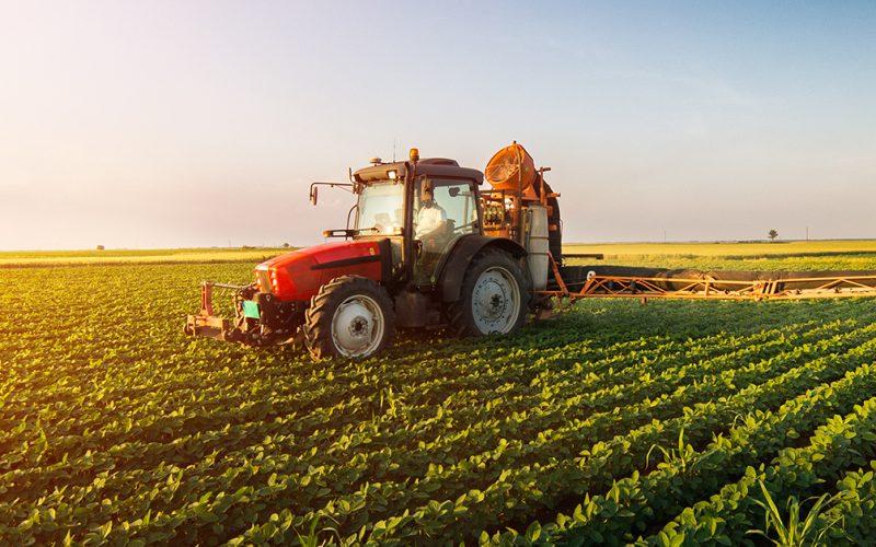 6,1 milioni per la ripresa post Covid-19 alle aziende agricole