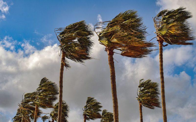 Vento forte e mare agitato: nuova allerta meteo per giovedì