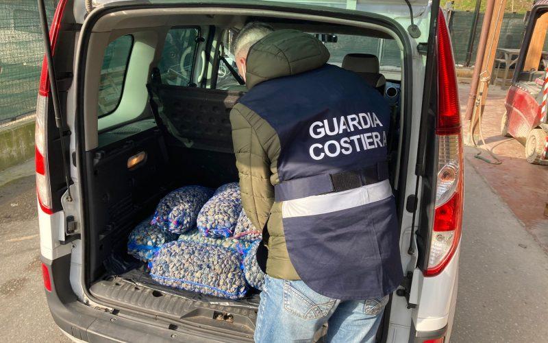 Sequestrati 130 kg di vongole, per un uomo una multa di 1500 euro